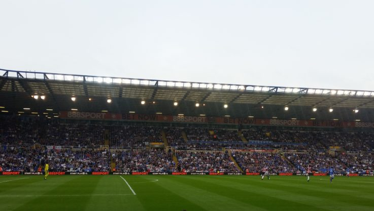 View From The Main Stand